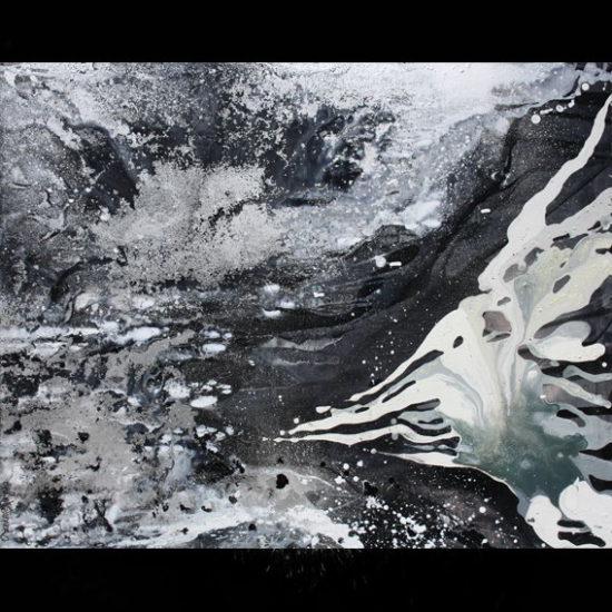 Le perroquet Blanc